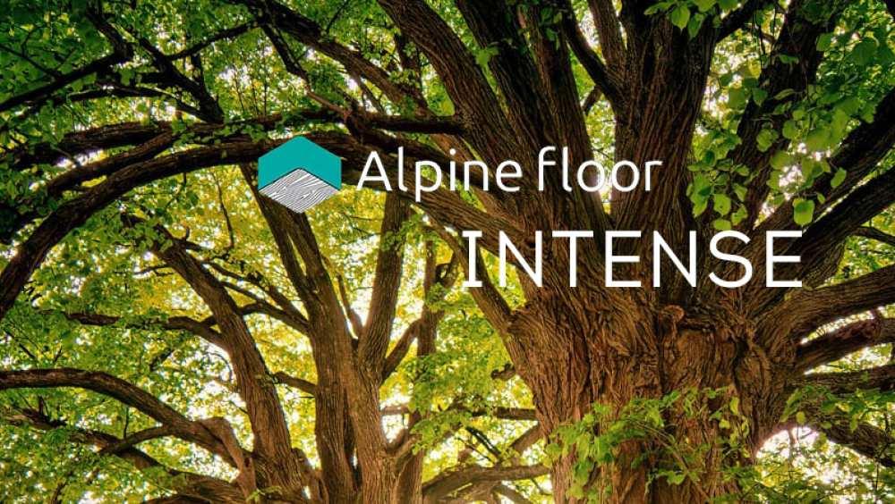 Акция на новую коллекцию Alpine Floor INTENSE
